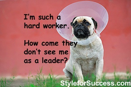 Sad Dog with Tips to Increase Your Visibility